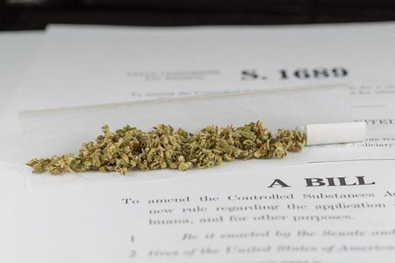 Senate Committee Slams Marijuana's Federal Classification, Saying Schedule I Blocks Research