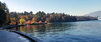 Vancouver Bay Walk