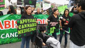 cannabis in chile