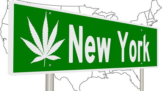 New York Wine And Spirits Retailers Lobby To Sell Legal Marijuana