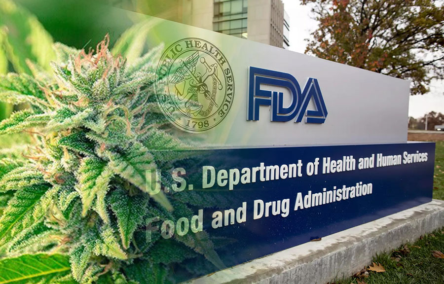 U.S. FDA Calls for Citizen Input on Descheduling Cannabis