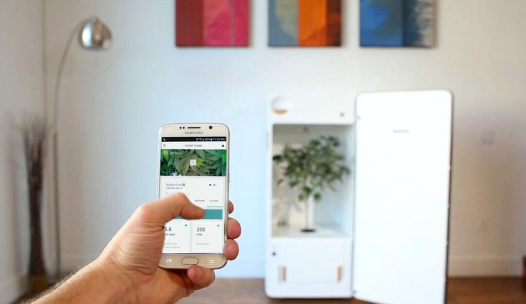 Grow Tech: Gadgets for the Home Cannabis Cultivator