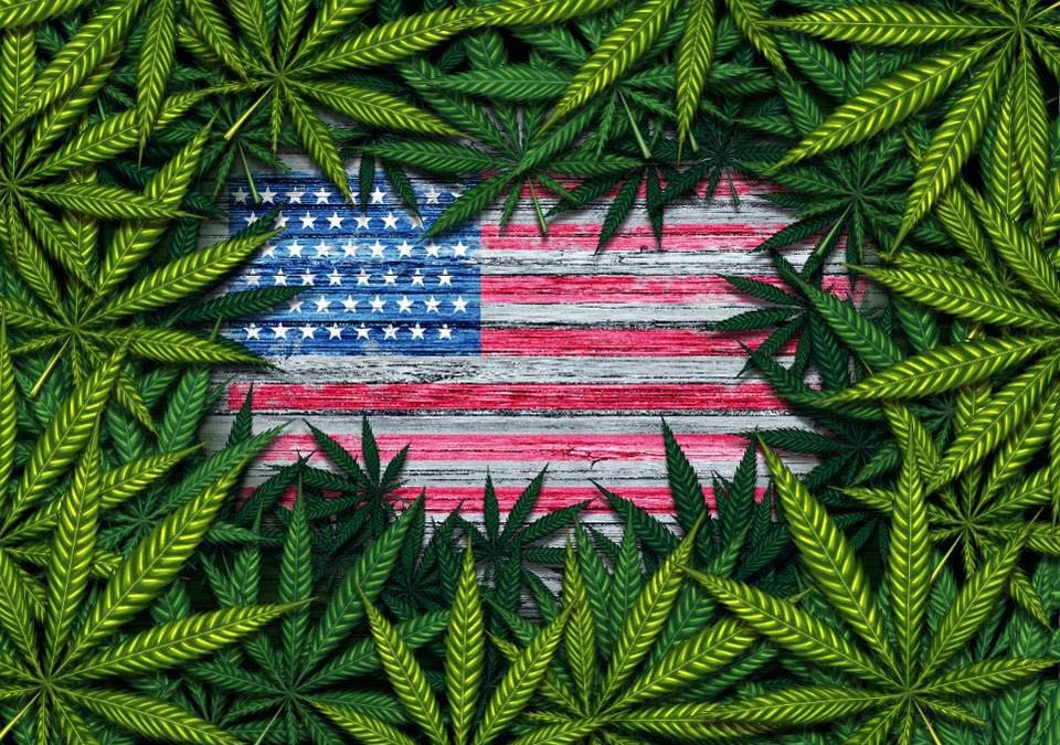 Congress Votes To Block Feds From Enforcing Marijuana Laws In Legal States