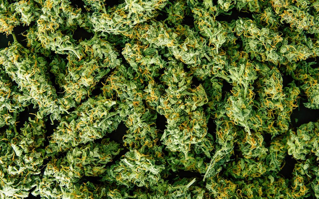 Cannabis Pricing: Wholesale vs. Retail in 2020