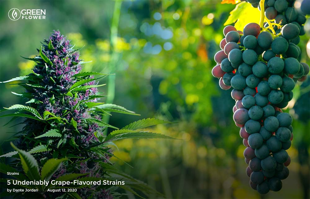 5 Undeniably Grape-Flavored Strains