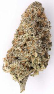 Diamond Grape Bud