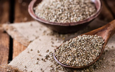 Hemp Seeds An Excellent Source Of Omega-3 And Omega-6 Fatty Acids