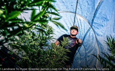 From Landrace To Hype: Breeder James Loud On The Future Of Cannabis Genetics