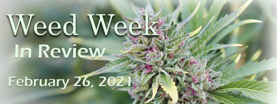 Weed Week in Review February 26, 2021